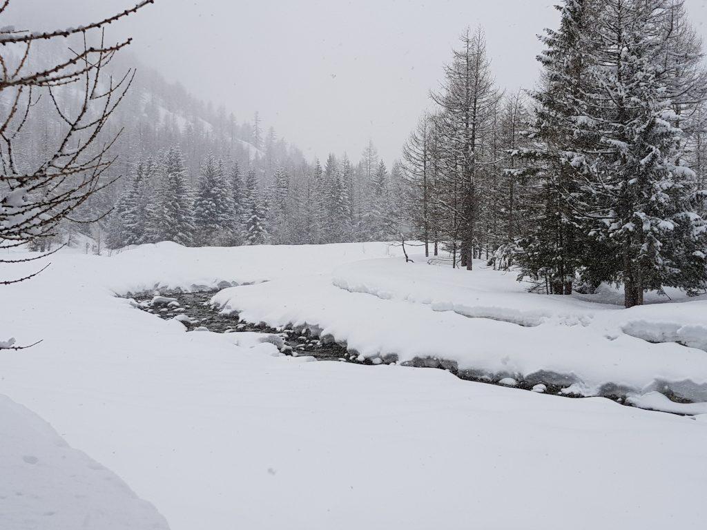 Paesaggio sotto la neve