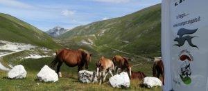 Abruzzo in camper i nuovi itinerari