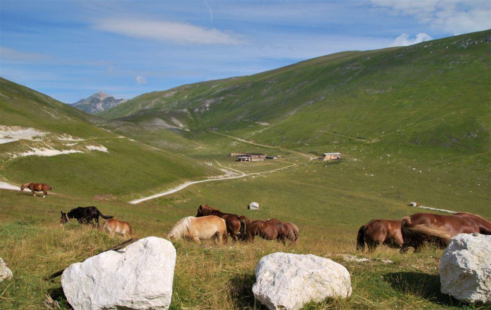 Abruzzo in camper i nostri nuovi itinerari Campo Imperatore