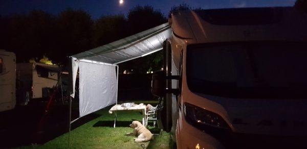 Cani in libertà in campeggio