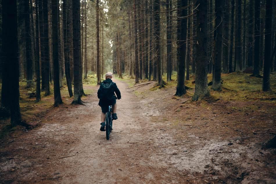 Itinerari in bicicletta in Emilia Romagna
