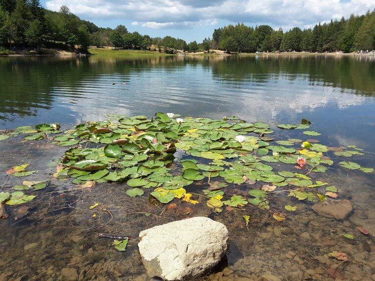 Lago Calamone - Ventasso