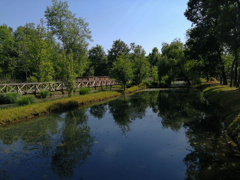 itinerario in Friuli Venezia Giulia Ariis acquario