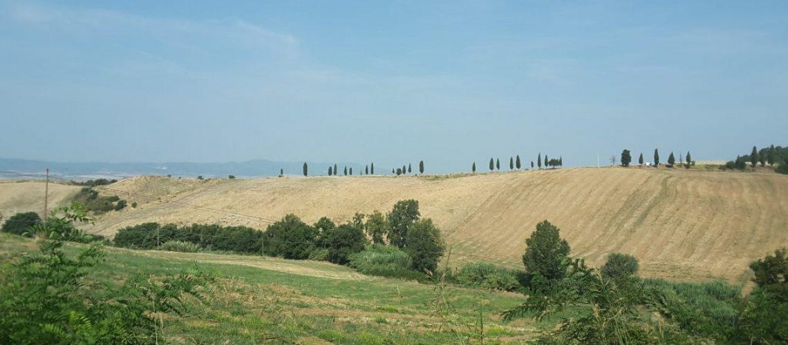 Panorama colline di Pisa