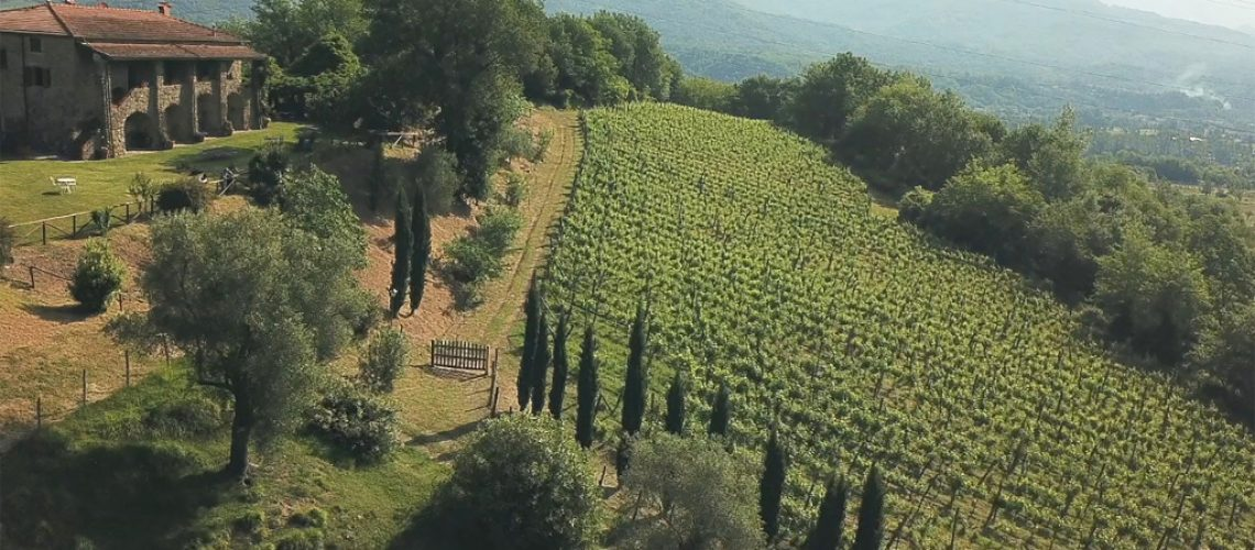 Podere Fedespina Winery