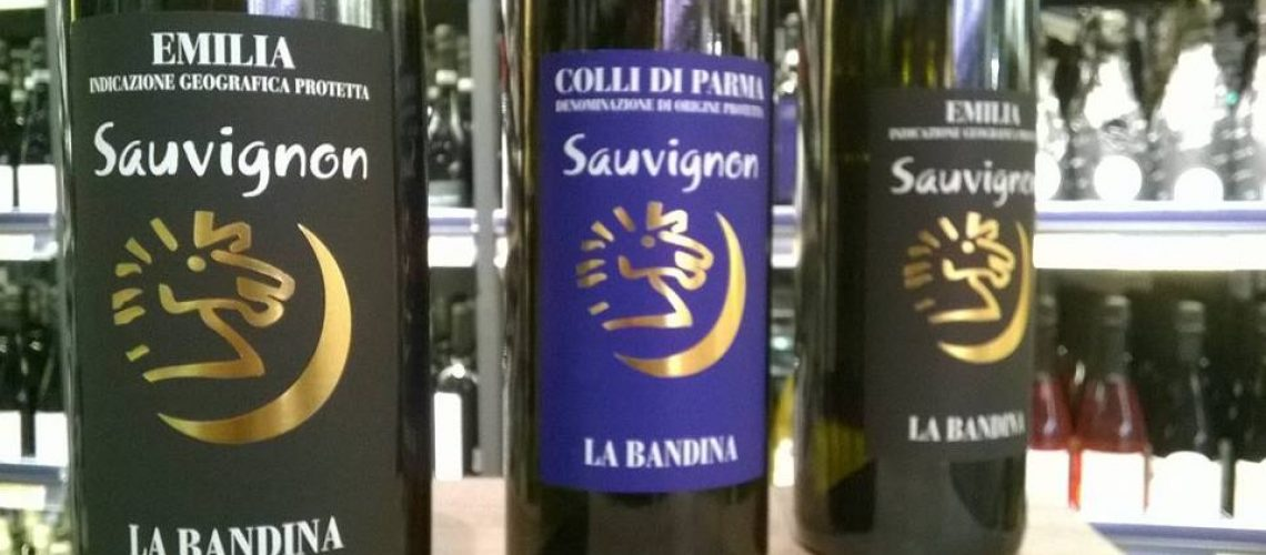 azienda-vitivinicola-la-bandina