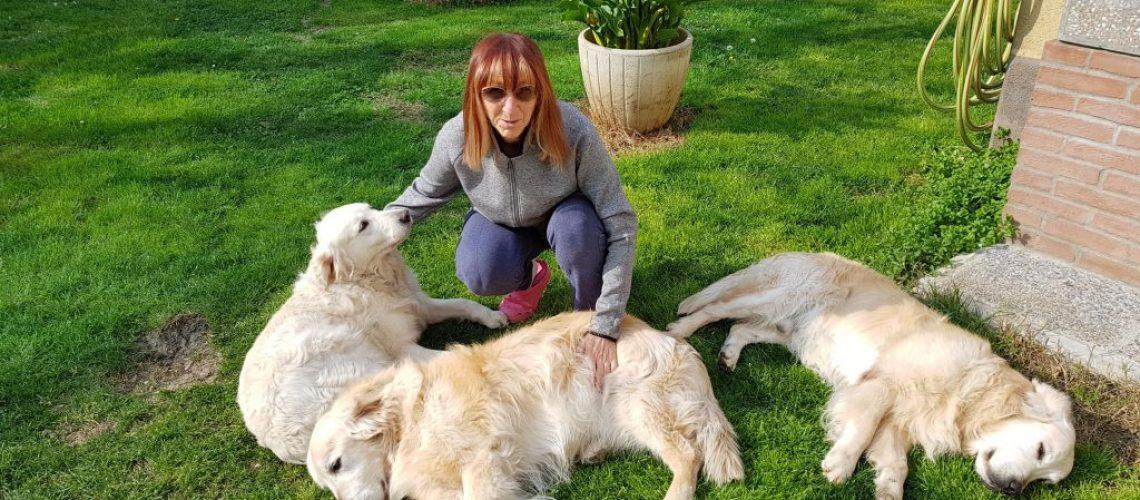i cani a casa (1)