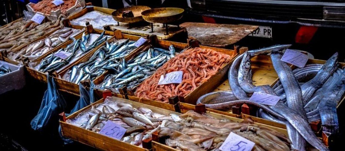 mercato del pesce (1)