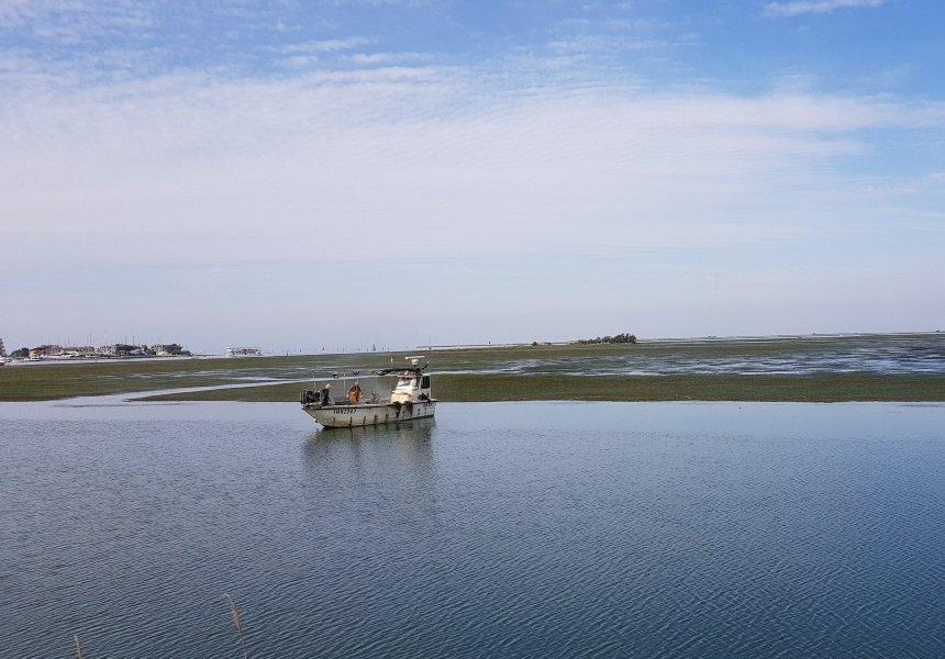 Laguna di Marano e la pesca